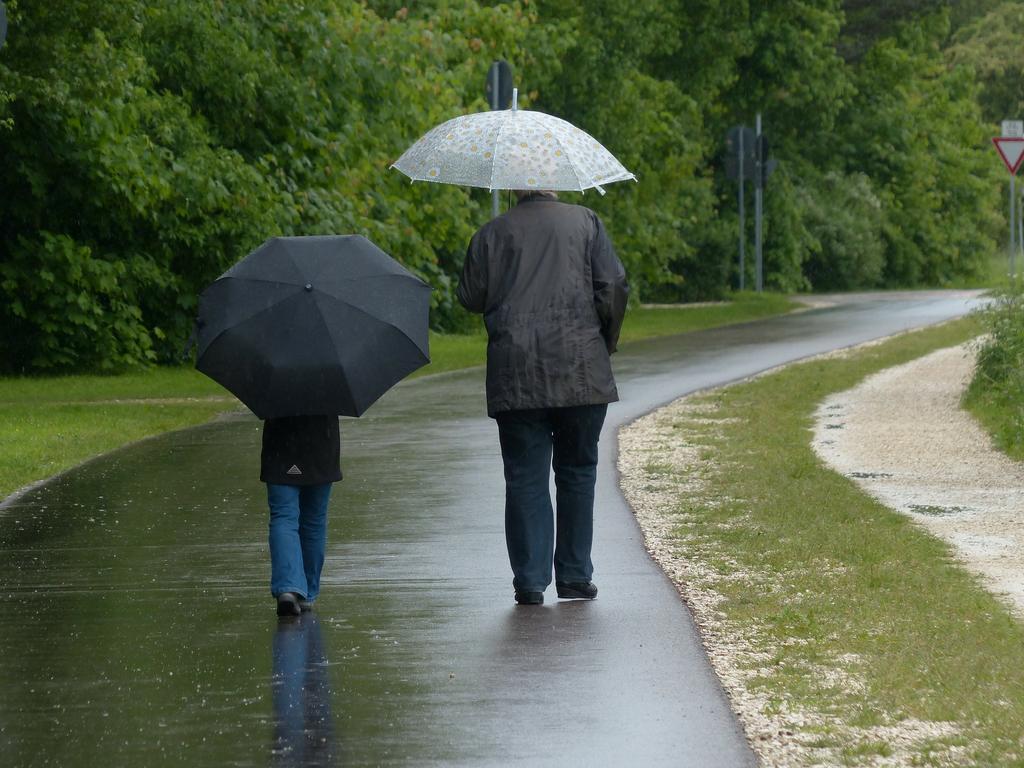 גשום וקר   צילום המחשה: pixabay